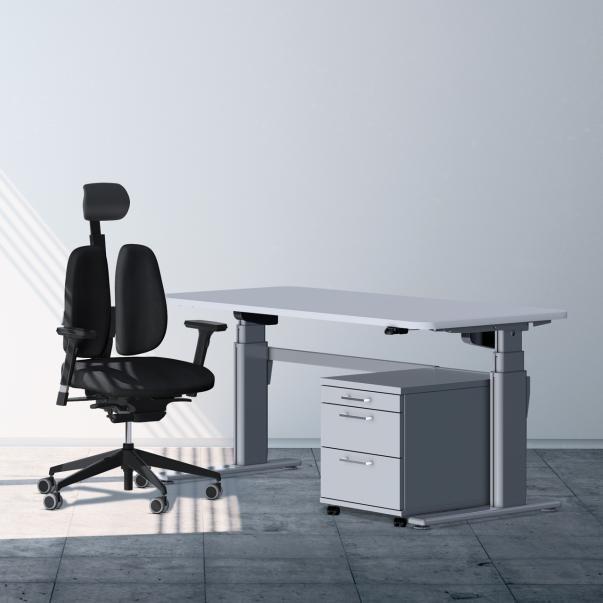 Ergodesk E2C Elektrisch Verstelbaar Bureau