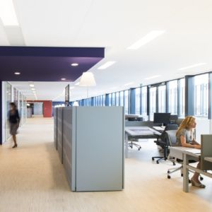 Systeemplafond – Focus serie Ecophon