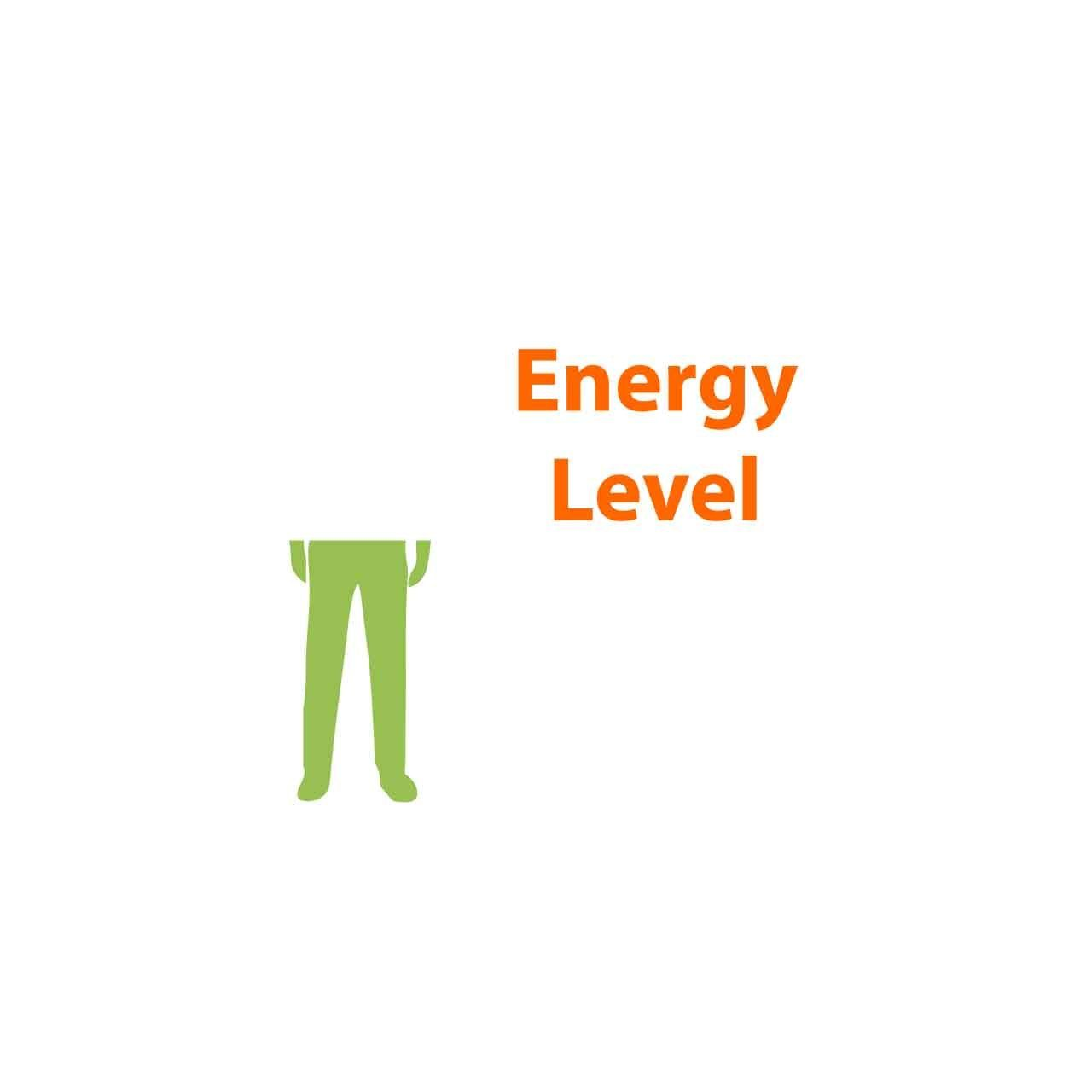 SitStandCoach arbo software energy level