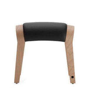 Zami Ergo wood